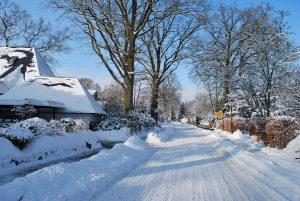Winter Klein Hansdorf 2010